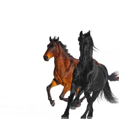 Old Town Road (Remix) - Lil Nas X feat. Billy Ray Cyrus