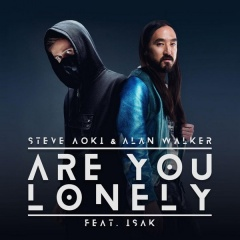 Are You Lonely - Steve Aoki & Alan Walker feat. Isak
