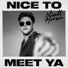 Nice To Meet Ya - Niall Horan