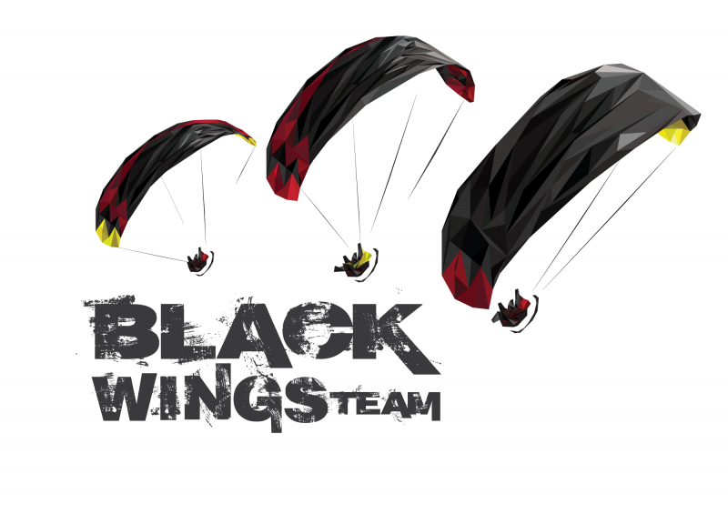 Black Wings Team - logo